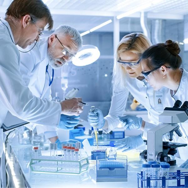 Zespół badaczy